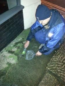 Broken bottle sweeping, something we do often to prevent accidents. 14/12/2013